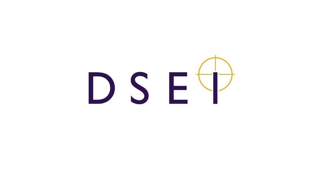 dsei-logo-image