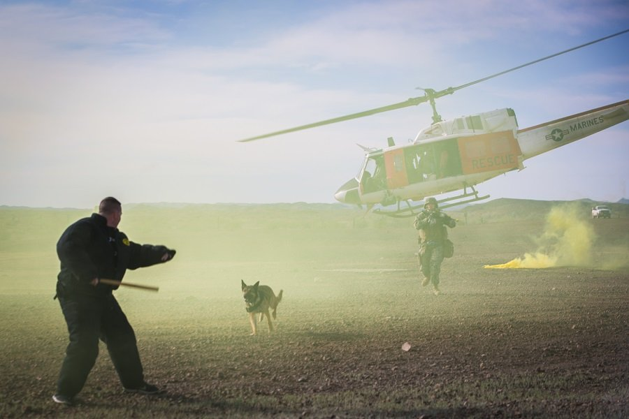 Military Working Dog Team Deployment Training Course