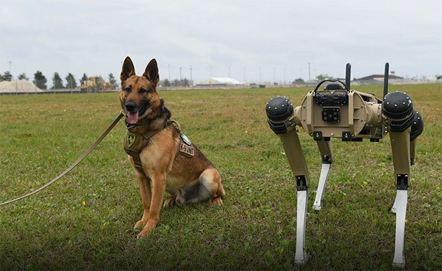 First 'robot dogs' came into service in the U.S. military